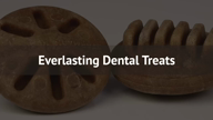 Everlasting Dental Treat Refills